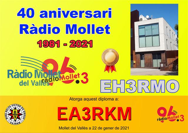 Diploma EH3RMO Bronce